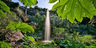 Photo of Fascino immutato e tante novità, ad aprile riaprono i Giardini La Mortella