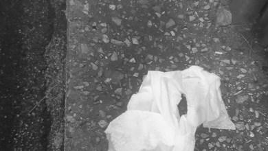 Photo of Pannolini usati in strada, il cambio del pupo è incivile