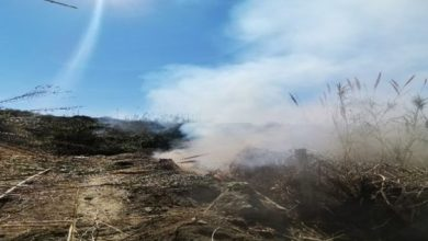 Photo of Incendi, scattano le indagini dei Carabinieri forestali