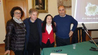 Photo of Ischia, verde sempre più a rischio J'accuse dell'agronomo Mattera:  «Amministratori menefreghisti»