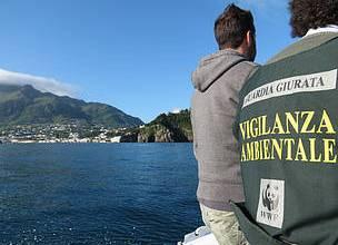 Photo of Ischia, volontari del Wwf contro i bracconieri