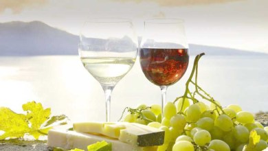 Photo of Va' dove ti porta il vino: anche il turismo diventa Doc