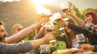 Photo of Il vino ai tempi del web: ai millennials piace BIO