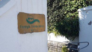 Photo of L'EVI raddoppia, aperto uno sportello anche a Forio