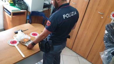 """Photo of Sbarca con 40 """"canne"""" già confezionate, arrestato dalla polizia"""