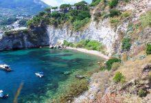 Photo of Spiaggia di Varulo, coniglio ucciso a sassate: la scommessa dei bagnanti di Ferragosto