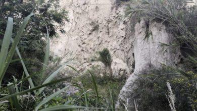 Photo of La rivelazione choc, spunta il lato mistico dell'olmitello