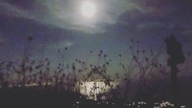 Photo of Chiaro di luna all'Epomeo, Ischia promuove il turismo lento