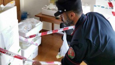 Photo of Casamicciola: 300 chili di latticini sequestrati
