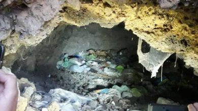 Photo of Grotta degli orrori a Casamicciola, spunta un cimitero di conigli