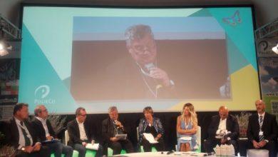 Photo of Forum polieco, a Ischia la denuncia del vescovo di Acerra