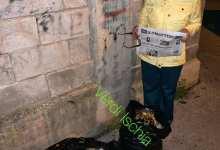 Photo of Alimenti UE tra i rifiuti, sporta denuncia ai carabinieri