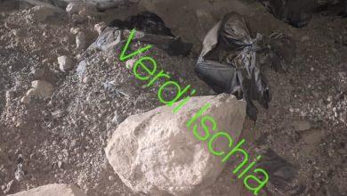 Photo of IL CASO Due grotte trasformate in discariche, la denuncia dei Verdi