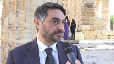 Photo of Vini ischitani protagonisti nella Guida al vino campano 2019/2020