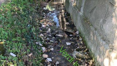Photo of Scempio Rio Corbore, il caso arriva in Regione