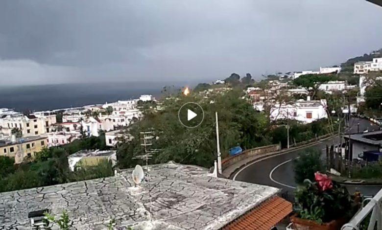 Photo of Paura a Lacco Ameno, fulmine centra una pianta – Il Video