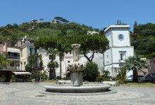 Photo of Lacco, approvato il progetto                           per l'incremento del verde pubblico