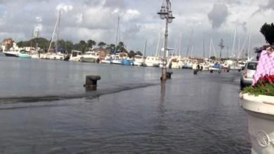 Photo of Nafta nel porto e l'alta marea insozza la Riva Destra