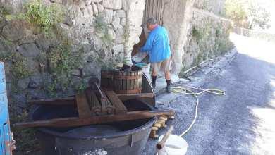 """Photo of A Ischia torna """"banda del torchio"""", rubate pigiatrici e strumenti per la vendemmia"""
