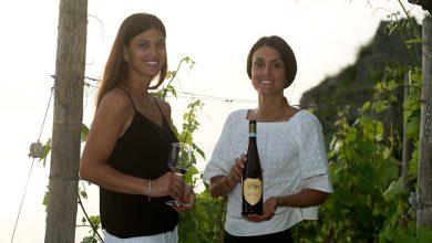Photo of LA STORIA A Ischia nuova vita agli scarti del vino