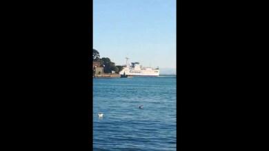 Photo of Ischia, nave INCAGLIATA fuori al porto: Il Video