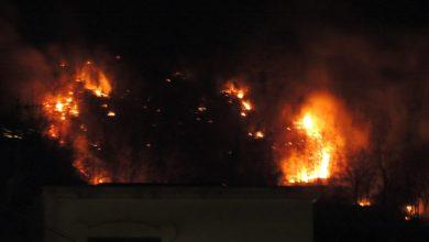 Photo of Aggirano i divieti e mandano in fumo il Monte Stavia