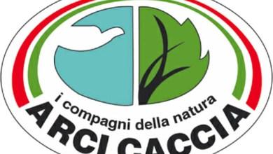Photo of L'appello di Arci Caccia: «Donate e rispettate le regole»