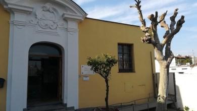 Photo of La Biblioteca  Antoniana c'è: parte il servizio di assistenza online