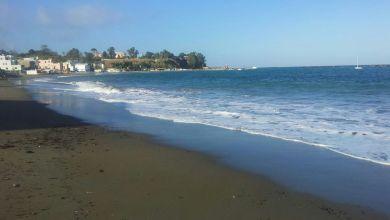 Photo of Il destino delle nostre spiagge, prima sparite poi rinate dopo il danno la beffa di rimanere senza clientela