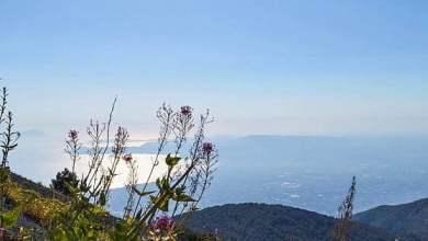 Photo of Travel Blogger per l'Italia celebra anche le bellezze di Ischia