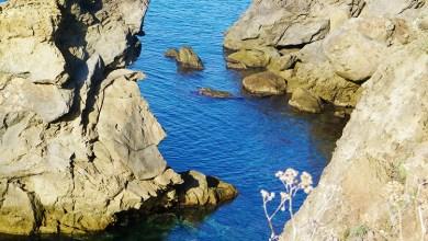 Photo of Continua la battaglia in difesa del patrimonio paesaggistico d'Ischia