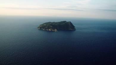 Photo of Tagliatori di teste, isole-carcere e senzatetto attori: IFFl, ecco i fuori concorso