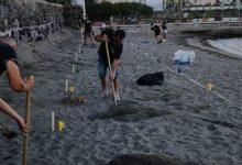 Photo of Vergogna sulla spiaggia, rimossi i paletti segnaposto destinati ai Disabili
