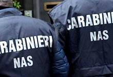 Photo of L'OPERAZIONE NAS, denunce e sequestri in provincia: c'è anche Forio