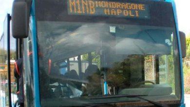 Photo of Regione, arrivano 250 bus privati: stanziati 4 milioni