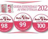 I faccini per il DoctorWine con 98/100 – 99/100 e 100/100 della Guida Essenziale ai Vini d'Italia 2021… con un mio piccolo commento vino per vino