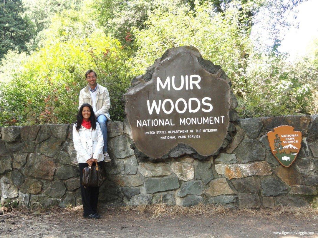 sequoie del muir woods national monument, redwood national california