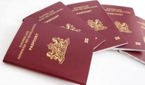 C:\Users\ILHAN\Desktop\NISAN 2020 BULTENINE GIRECEKLER\Nederlandse paspoort.jfif