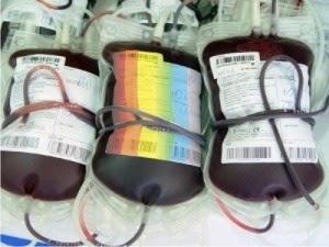 sangue por homossexuais
