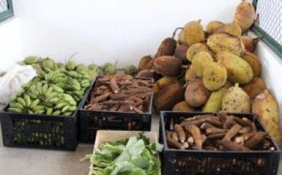 Programa de aquisição de alimentos (PAA) efetuou 1ª compra de produtos Agriculas-Secom Ilhéus