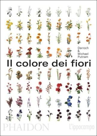 il-colore-dei-fiori