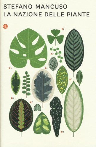 la-nazione-delle-piante