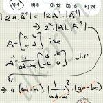 Determinant, bir matrisin değeri demektir.