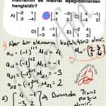 Bir matrisin ek matrisini bulma