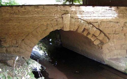 Un fiume e la sua città: l'ansa del Torrino