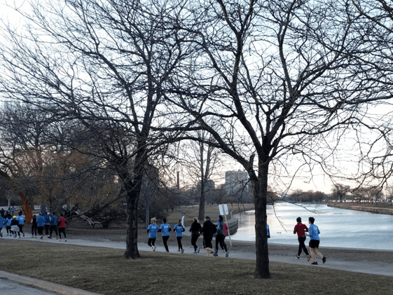 illinois science council 5k run