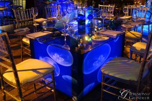 """Jellyfish Tables 58"""" x 68"""" Glass Tops x 30""""h"""
