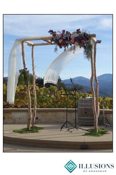 Wedding Birch Arch