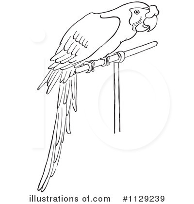 royalty free rf parrot clipart illustration by picsburg stock