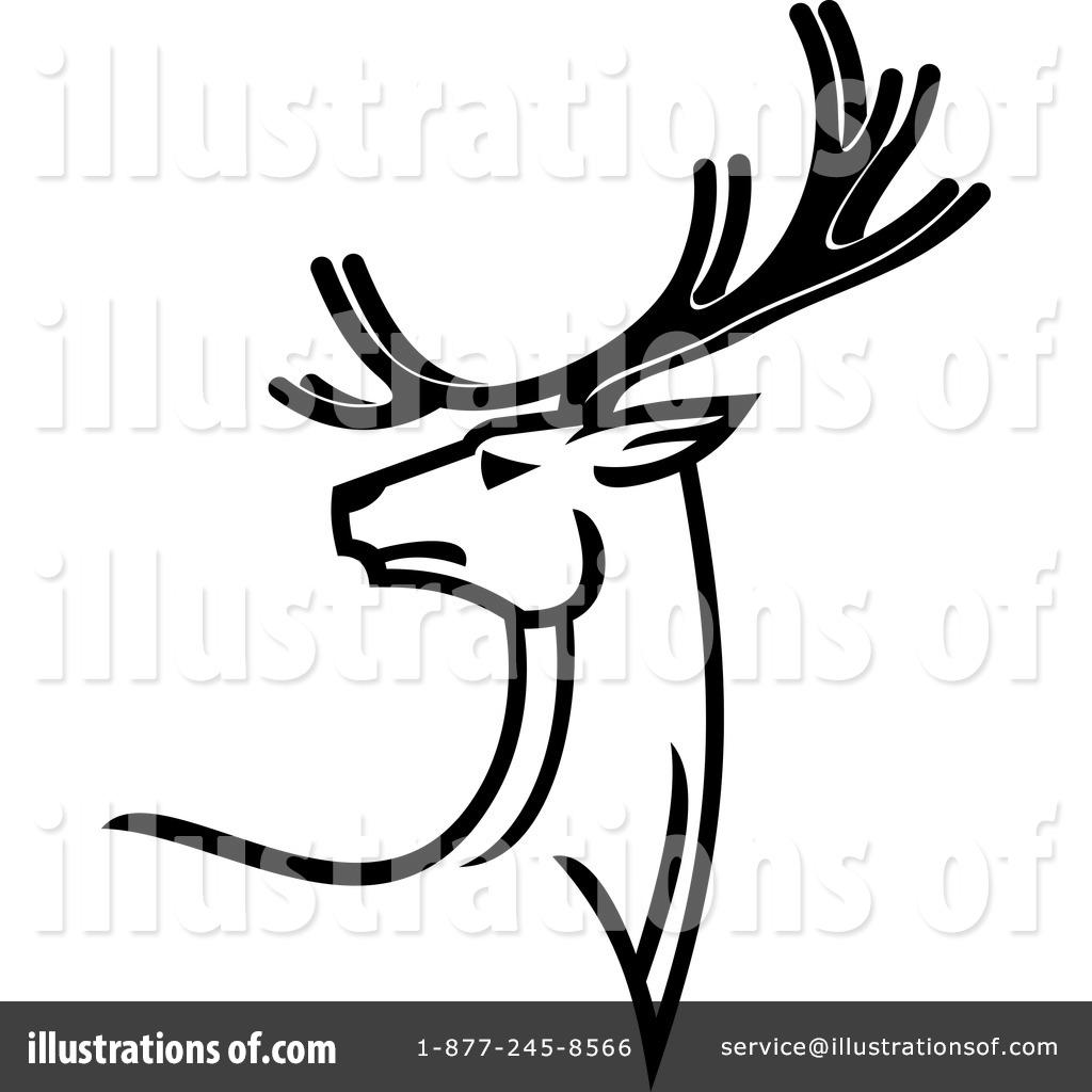 moose vs buck